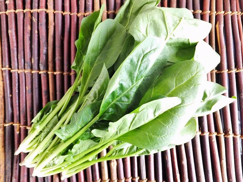 ほうれん草から抽出したチラコイドを利用してダイエットをすれば健康的に痩せることができるはずです。