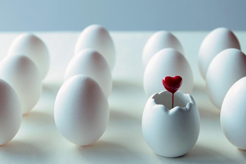 卵殻膜を配合した化粧品の口コミ効果ランキングであなたにピッタリなものが見つかります。