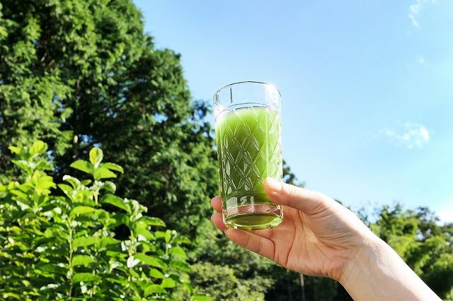 ただの青汁を飲んでいる人は、中性脂肪や血糖値を抑える機能性関与成分が配合された青汁に切り替えたほうが良いですよ!