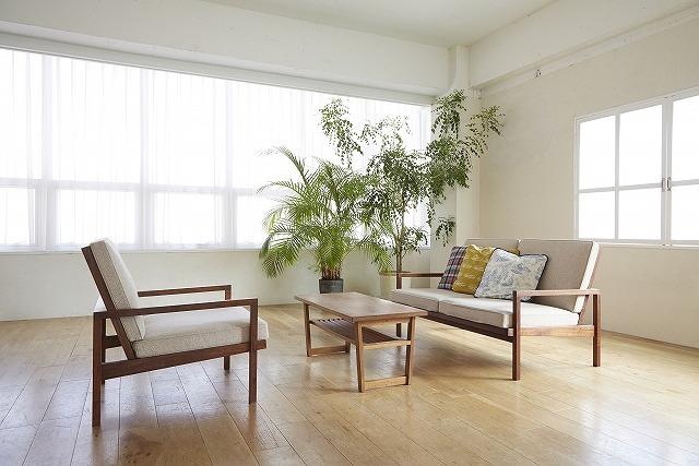 観葉植物を部屋に置いていけば湿度を上げることができます。